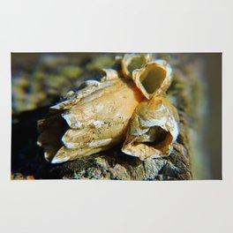 Barnacle Cluster Rug