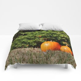 Pumpkins! Comforters