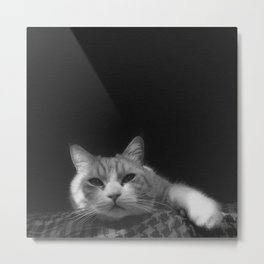 Thats My Cat !! 01 Metal Print