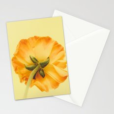 arriere Stationery Cards