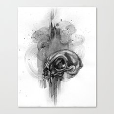Cat Skull Charcoal Drawing Canvas Print