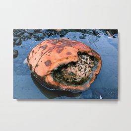 Big Orange Rock by the Sea Metal Print