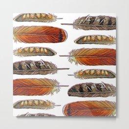 Raptor Feathers Metal Print