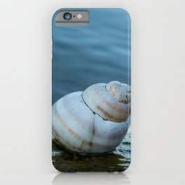 Snail shell on the shore of a lake. iPhone Case
