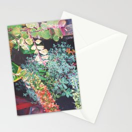 Lucious Chaos Stationery Cards
