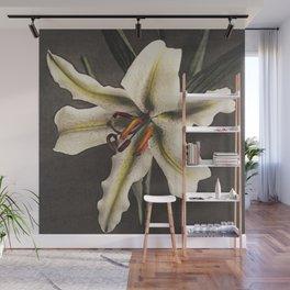 Kazumasa Ogawa - Lily Wall Mural