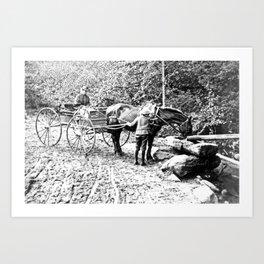 Vintage Adirondacks: The Roadside Watering Trough Art Print