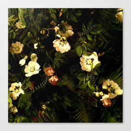 Floral Night III Canvas Print