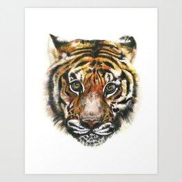 Tiger! Art Print