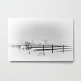 Horse Farm in Winter Storm,  Canandaigua 2014 Metal Print