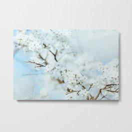 Floral VI Metal Print