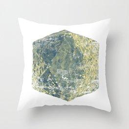 Platonic Throw Pillow