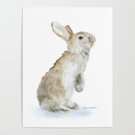 Bunny Rabbit Watercolor Poster