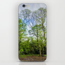 The six trees iPhone Skin