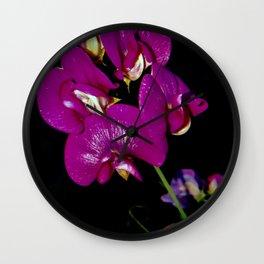 Flower Power III (Lathyrus) Wall Clock