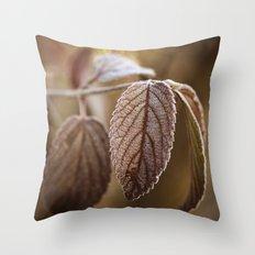November Frost Throw Pillow