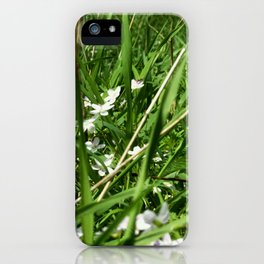 Spring Beauty 12 iPhone Case