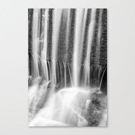 Liquid Light Canvas Print