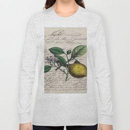 vintage Mediterranean summer fruit orchard citrus blossom yellow lemon Long Sleeve T-shirt