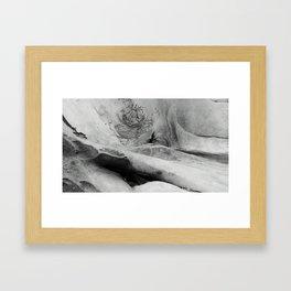 Whale Skull Framed Art Print