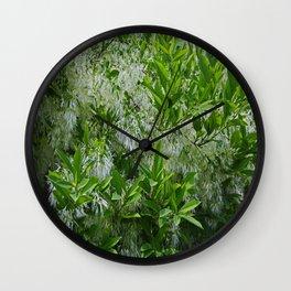 White Fringe Tree Wall Clock