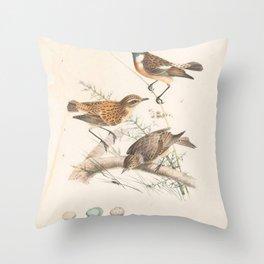 Stonechat, saxicola rubicola5 Throw Pillow