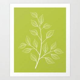 Chartreuse Green Leaf Botanical Illustration Art Print