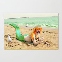 sassy Canvas Prints featuring Sassy by Jessica Beebe - Photography