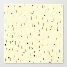 Ladybird invasion Canvas Print