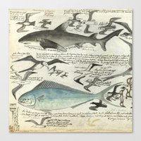 notebook Canvas Prints featuring Sealife Notebook by Common Design