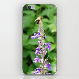 Garden Bee, 1 iPhone Skin