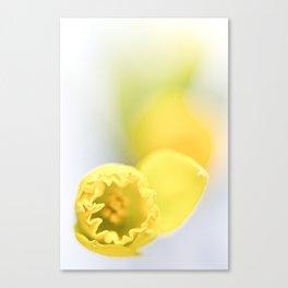 Soon it's spring ... Canvas Print