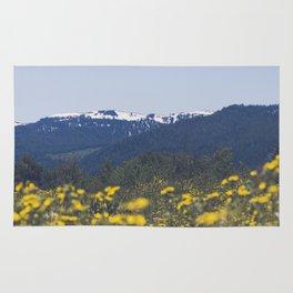 Spring Valley Rug