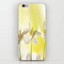 Three Ballerinas iPhone Skin
