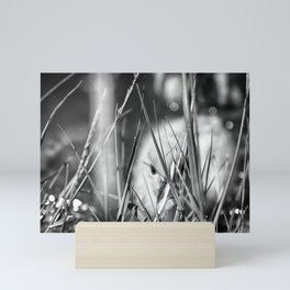 Hiding - Black & White Mini Art Print