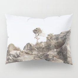sunrise on the island and a lonely desert tree, simply, modern and bright Pillow Sham