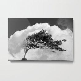 Arbre dans les nuages Metal Print