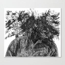 explode Canvas Print