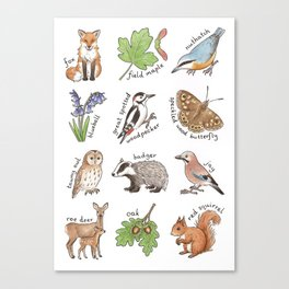 British Woodland Wildlife Canvas Print