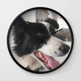 boating dog Wall Clock