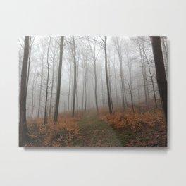 Nebel 2 Metal Print