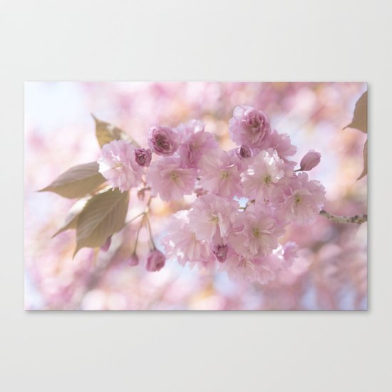 Pink Spring Cherryblossoms on #Society6 Canvas Print