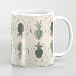 Astrolabe Molluscs Coffee Mug