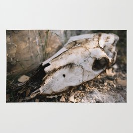 Deer Skull, Big Bend National Park Rug