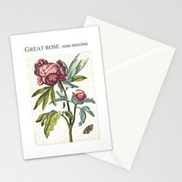 The Great Rose illustration Stationery Cards
