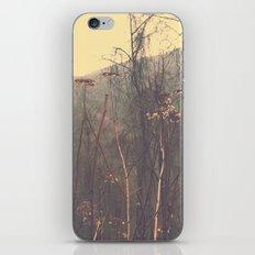 South Carolina iPhone & iPod Skin