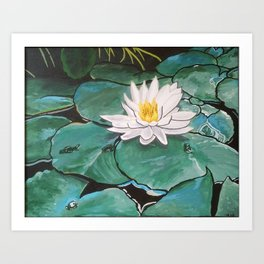 Lily of the Water Art Print