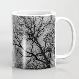 Cloudy day in the forest Coffee Mug