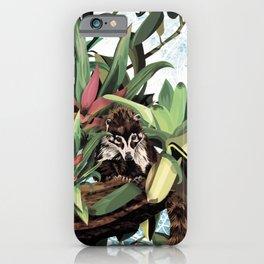 Ring tailed Coati iPhone Case