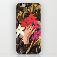oasis iPhone & iPod Skins featuring OASIS by Beth Hoeckel